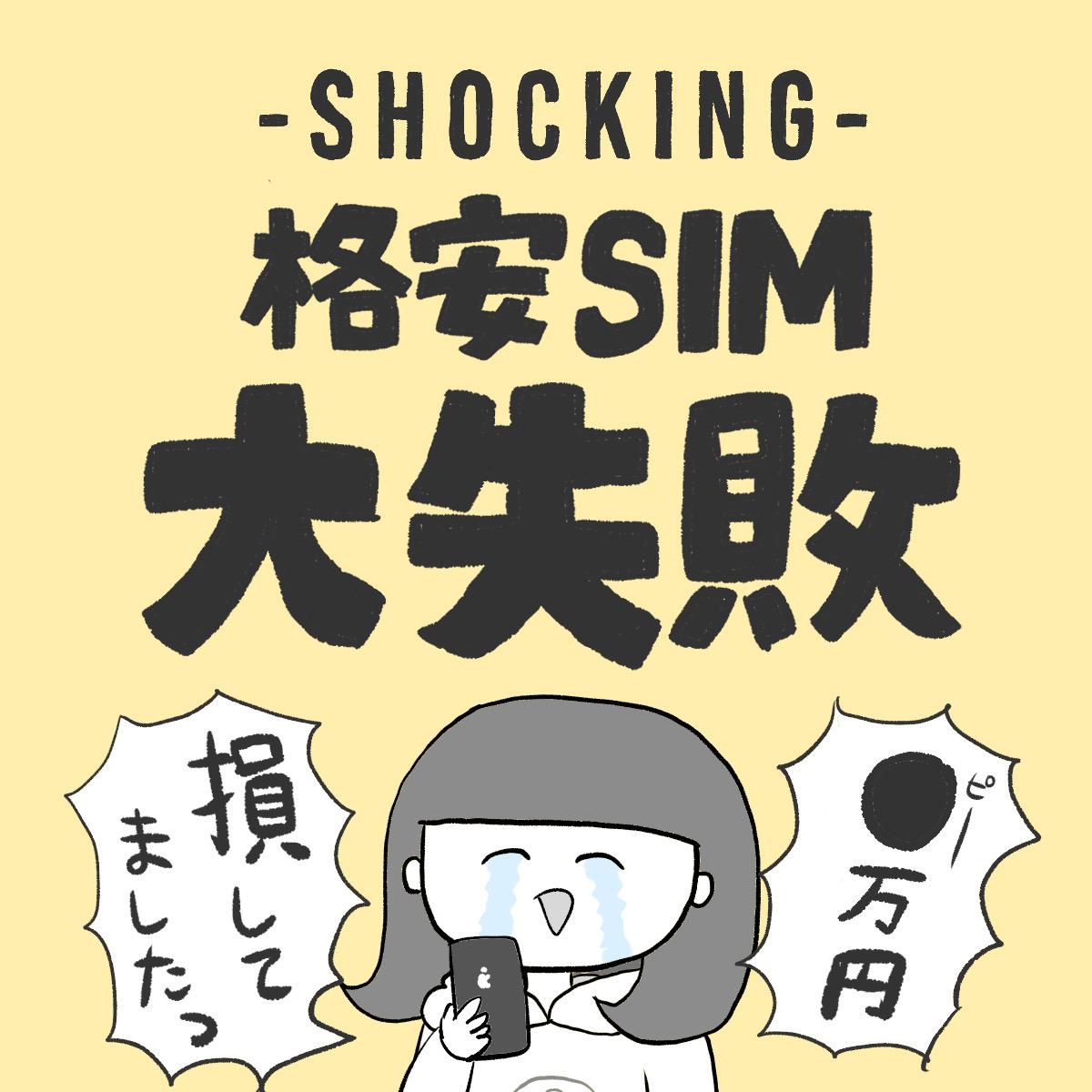 格安SIM、ぱおぱおの大失敗