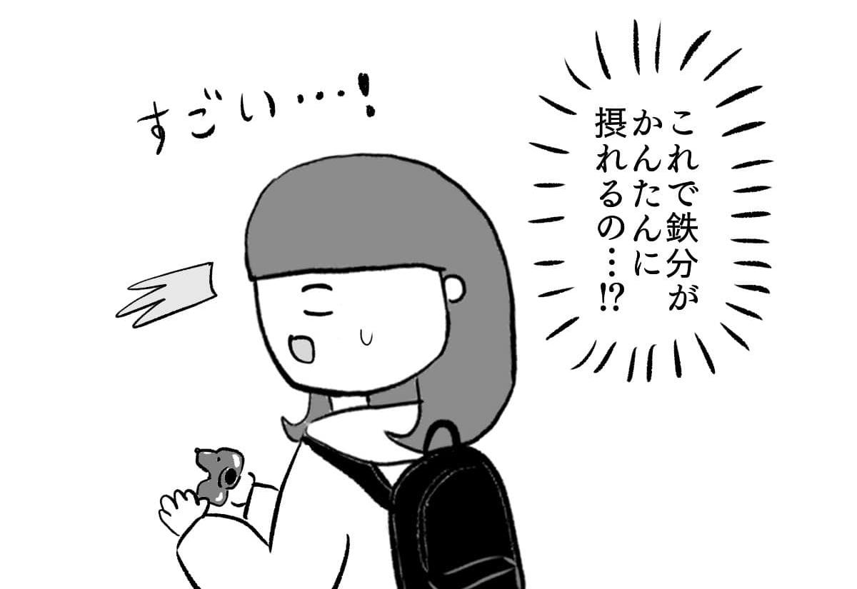貧血予防&改善 鉄たまご(鉄玉)